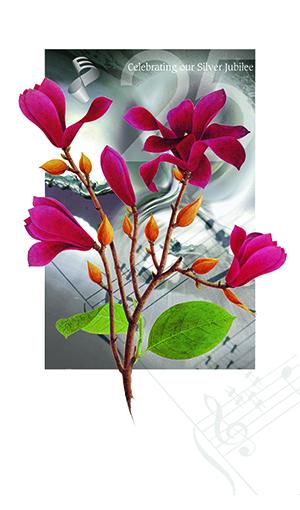 magnolia-sm